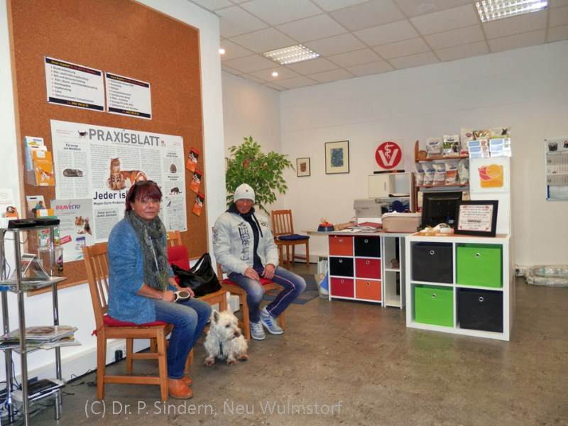 2-Tierarztpraxis-Neu-Wulmstorf-Wartezimmer