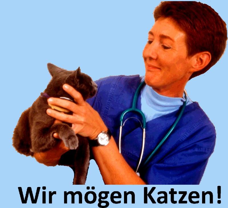 Tierarzt-Neu-Wulmstorf-Sindern-mit-Katze
